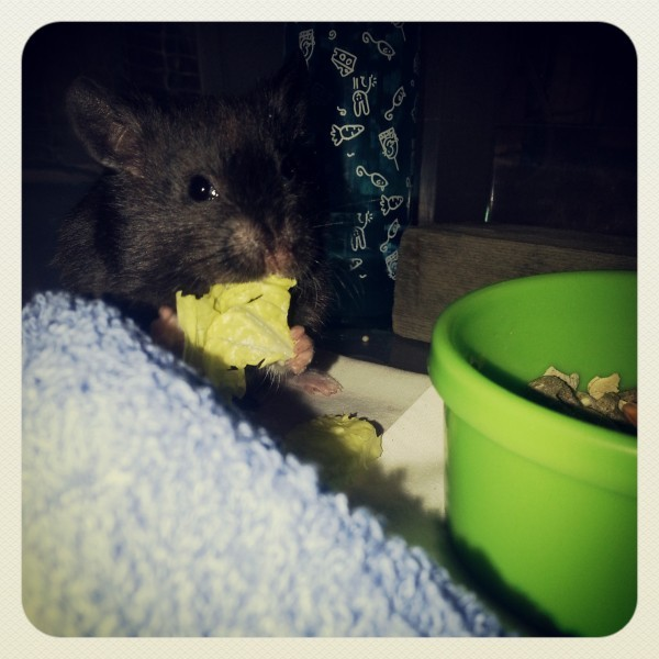 My baby eating
